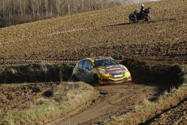 Guillaume de Mevius - Peugeot 208 R2