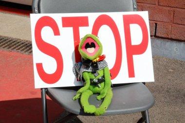 Kermit @ BGDC Spa 400