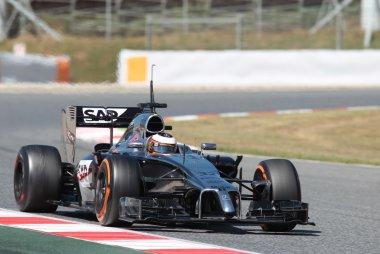 Stoffel Vandoorne - McLaren Mercedes