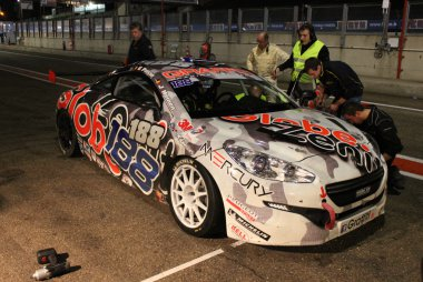 Heinen/Paisse/Menage - Peugeot RCZ
