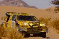 Peugeot 205 Turbo 16 - Ari Vatanen/Cyril Neveu