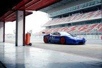Raf Vleugels - Ferrari F430 GT3