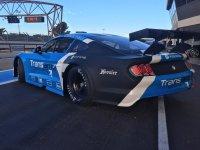 Transam Euro Racing - Mustang