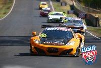 VIP Petfoods - McLaren MP4-12C GT3