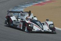 Muscle Milk Pickett Racing - HPD ARX-03c