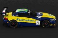 BMW Team Brasil Livery 2015