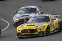 Bob Herber - SRT Selleslagh Racing Mercedes AMG