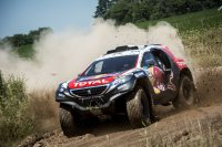 Carlos Sainz - Peugeot