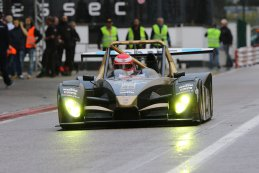 Avelon Formula -Wolf GB08