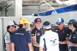 Max Verstappen Scuderia Toro Rosso