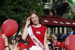 Miss Télé Zapping