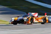 Petit Le Mans: winst voor Michael Shank Racing - titel voor AER