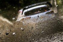 Veertien rally's voor Thierry Neuville om wereldkampioen te worden in 2019