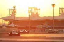 Bahrein: Nieuwssprokkels op vrijdag