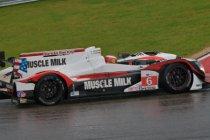 Austin: Muscle Milk HPD probleemloos naar de pole – BMW snelste bij de GT's