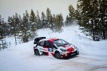 WRC: Toyota voert de druk op