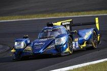 Stoffel Vandoorne in het WEC en Asian Le Mans Series met Jota Sport