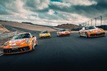 Porsche Carrera Cup Benelux-kampioen trekt naar Porsche Mobil 1 Supercup