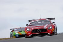 Hungaroring: Marciello en Abril winnen - Dubbel voor Mercedes