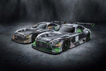 Haupt Racing Team met twee wagens naar GT World Challenge Europe