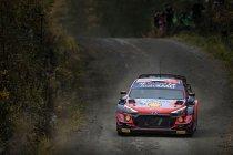 WRC: Hyundai zet zich meteen op kop in Finland