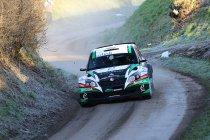 Rally van Spa: Loix uit op revanche