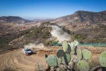 Mexico: Tänak mag eerste keer veger van dienst zijn