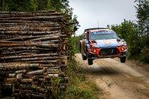 WRC: Tänak sant in eigen land, Neuville hangt in de touwen
