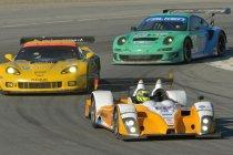 Ook Renger van der Zande naar Starworks Motorsport