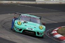 Alessio Picariello met Falken naar NLS en 24h Nürburgring