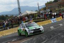 Nieuw WRC-reglement heeft vooral invloed op WRC2