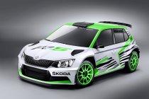 Škoda rondt homologatie Škoda Fabia R5 af