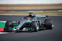 Groot-Brittannië: Hamilton snelste in laatste training
