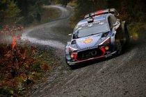 WRC: Wales cruciaal moment in titelstrijd